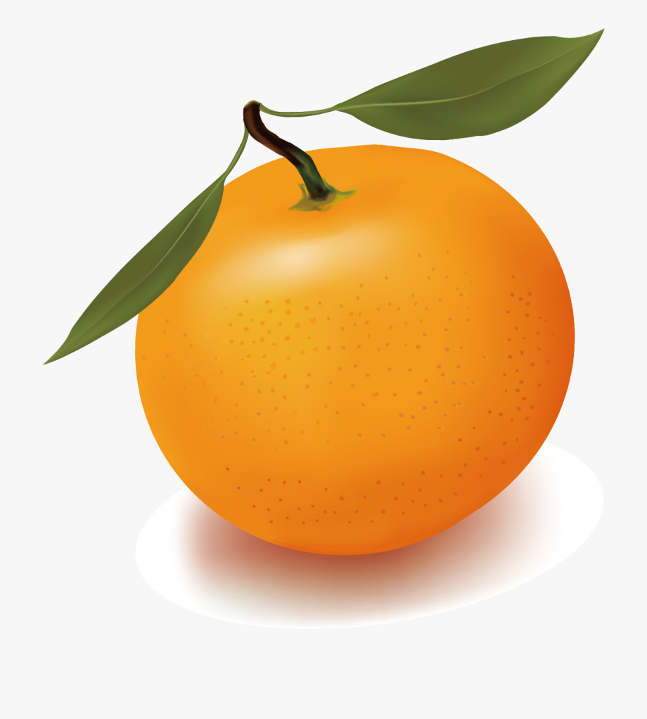 Clementine clipart jpg free download Orange Juice Free Content Clip Art - Clementine Png #1417493 - Free ... jpg free download