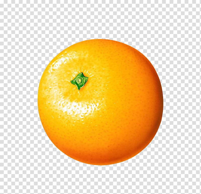 Clementine clipart picture library Orange fruit , Orange juice Clementine, Orange transparent ... picture library