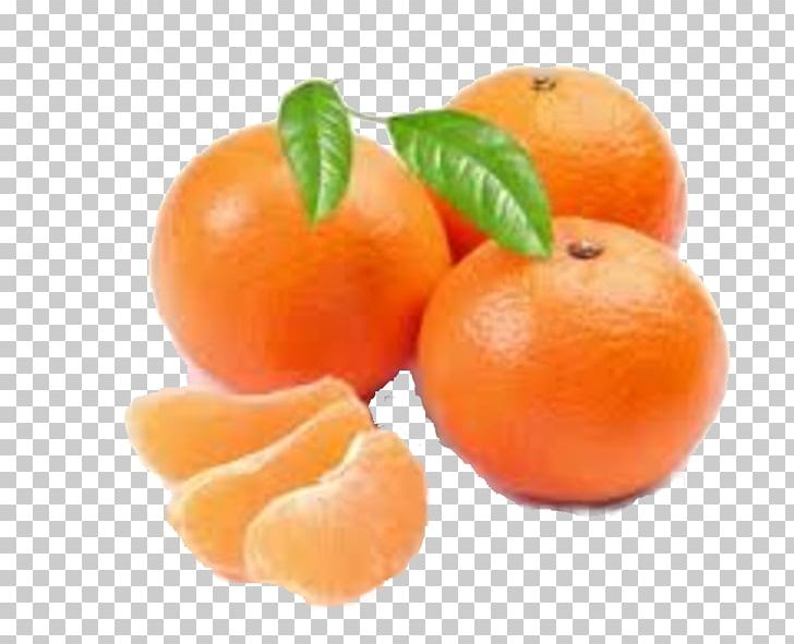 Clementines clipart picture download Clementine Mandarin Orange Tangerine Fruit PNG, Clipart, Bitter O ... picture download