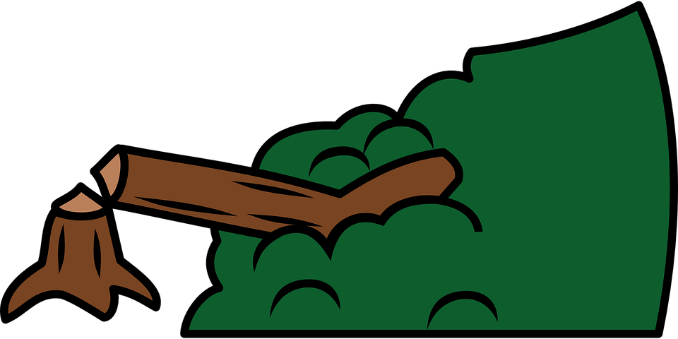 Climb tree clipart graphic free download Treemagineers Blog – Page 14 graphic free download