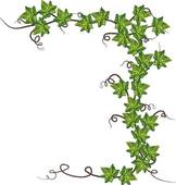 Climbing plant clipart