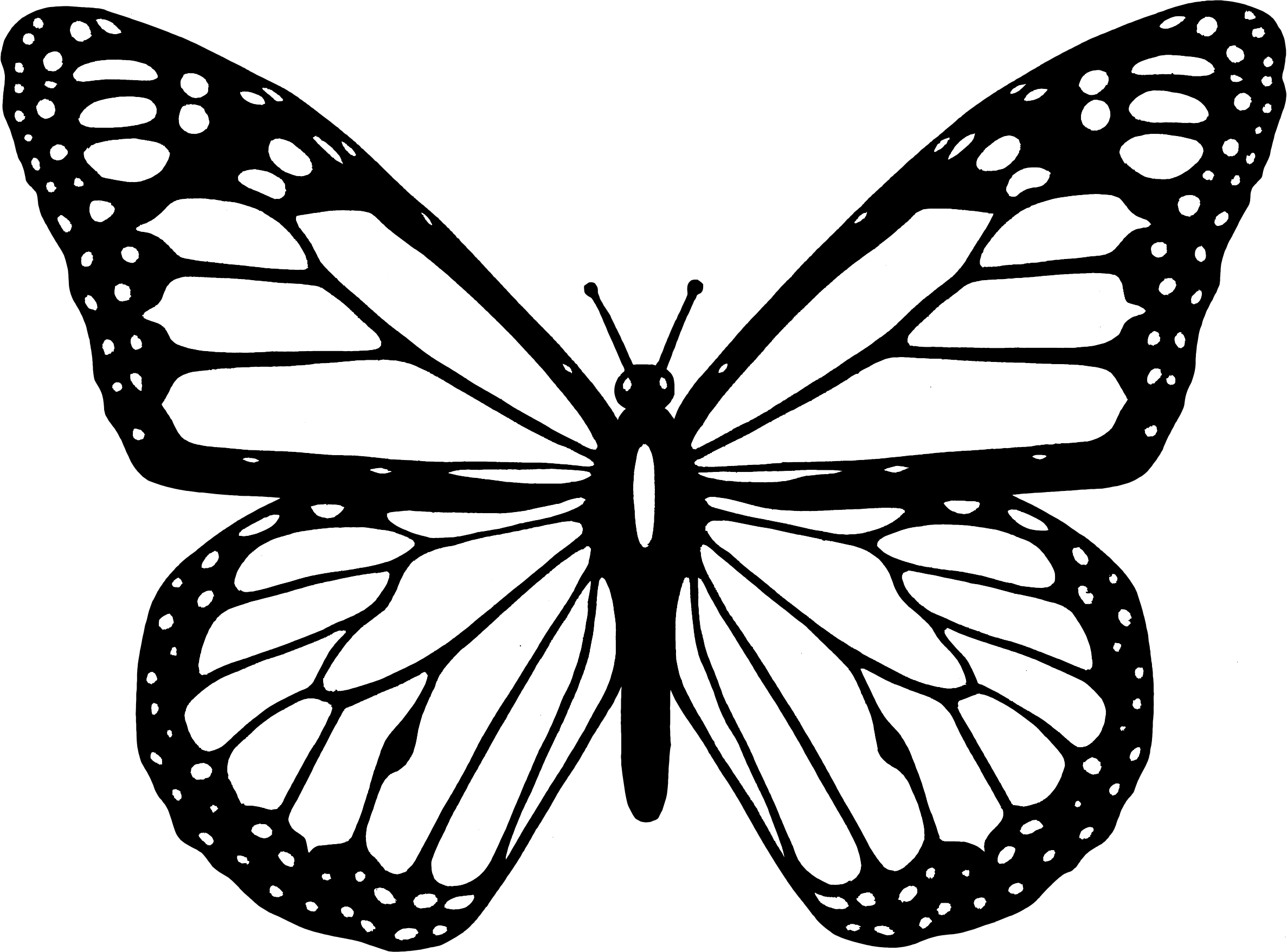 Clip art black and white image freeuse library Clipart - Black And White Butterfly image freeuse library