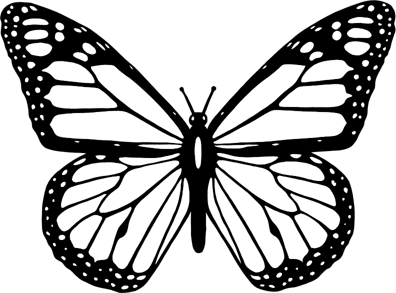 Free color book clipart butterfly picture transparent Clipart - Black And White Butterfly picture transparent