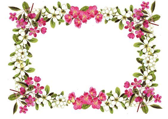 Clip art floral borders jpg free download Free Printable Clip Art Borders | free digital flower frame png ... jpg free download