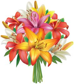 White and pink lilies. Clip art flowers bouquet
