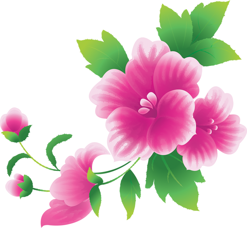 Flower clipart png transparent stock Clip art flowers pictures - ClipartFest transparent stock