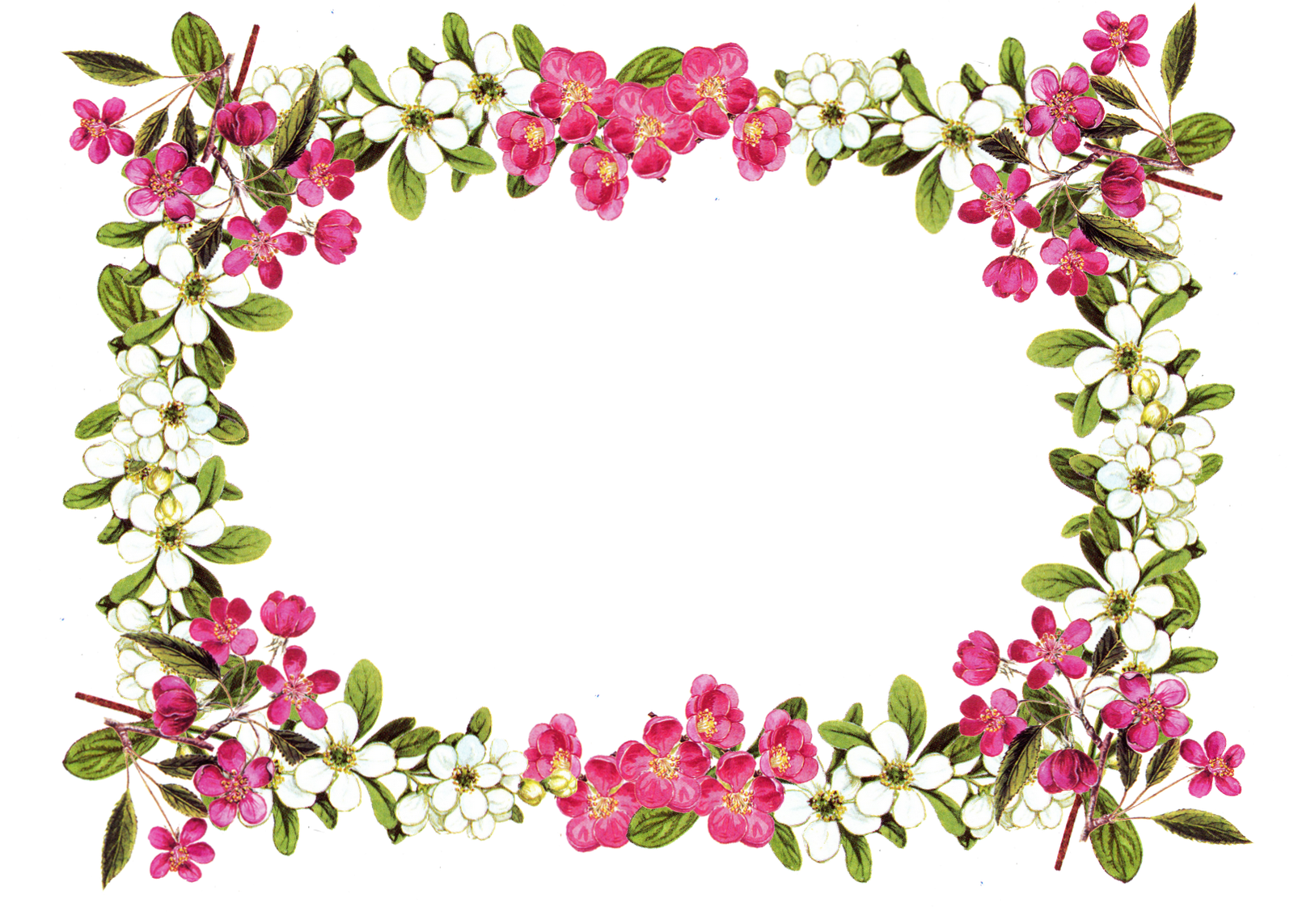 Flower circle border clipart banner library Free Printable Clip Art Borders | free digital flower frame png and ... banner library