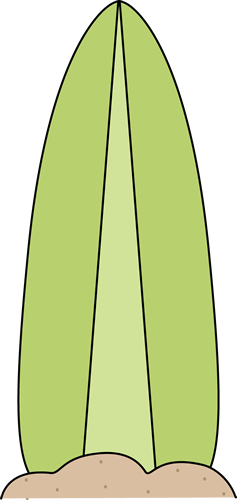 Images green in the. Clip art surfboard