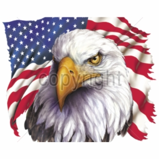 Clipart american flag eagle banner freeuse download Bald Eagle Clipart Patriotic - Crying Eagle American Flag - bald ... banner freeuse download