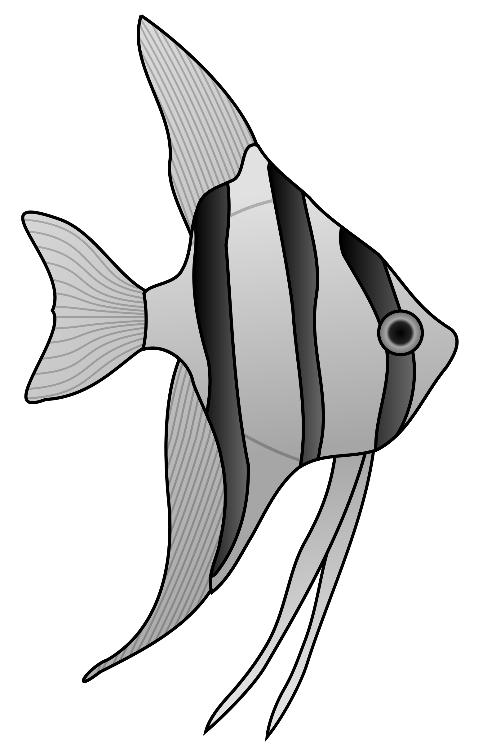 Clipart angel fish png black and white stock Clipart - Angelfish png black and white stock