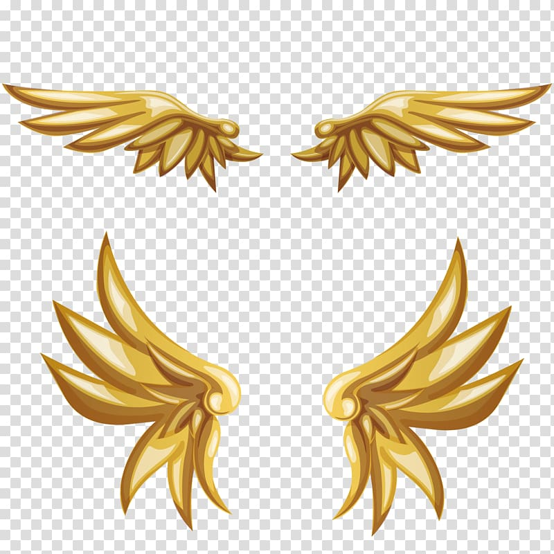 Gold wings clipart transparent stock Gold wings illustration, Buffalo wing, Angel wings transparent ... transparent stock
