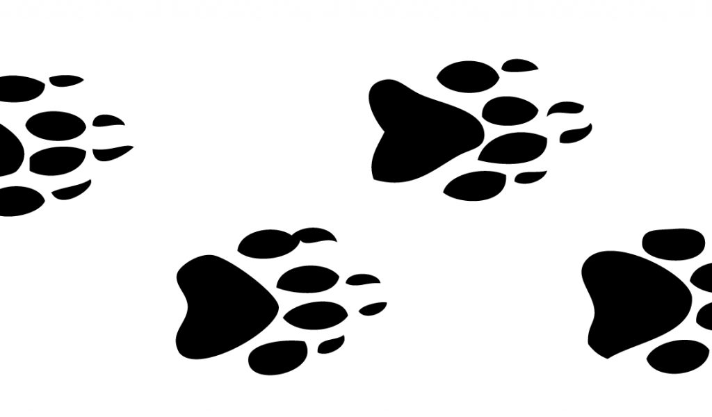 Wildlife tracks clipart clipart royalty free Free Animal Tracks Cliparts, Download Free Clip Art, Free Clip Art ... clipart royalty free