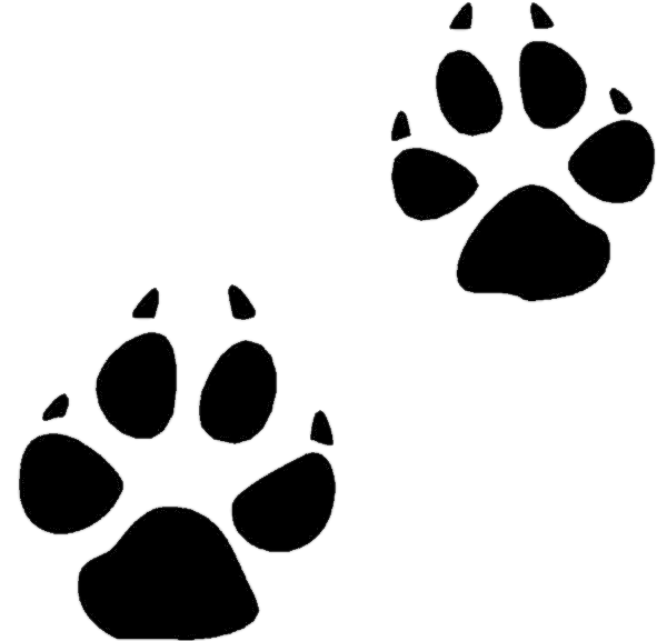 Wildlife tracks clipart image free stock Free Animal Tracks Cliparts, Download Free Clip Art, Free Clip Art ... image free stock