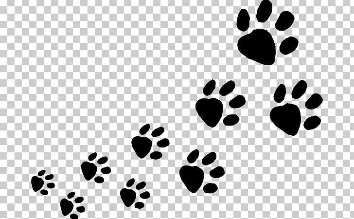 Clipart animal tracks