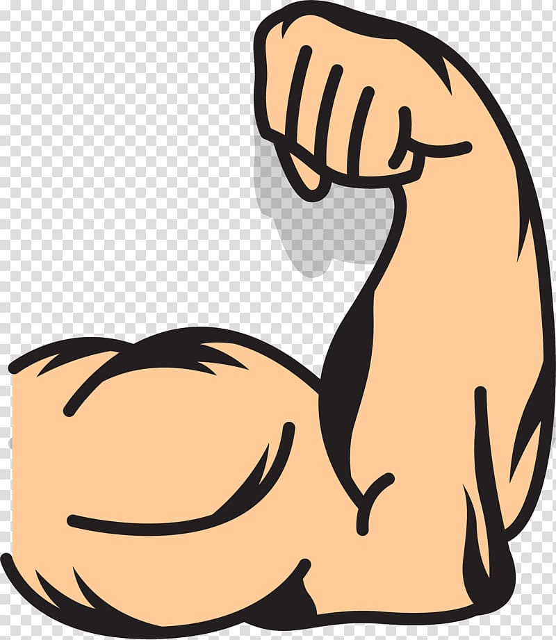 Clipart animated flexiong arm clip art transparent Human muscle illustration, Muscle arms Muscle arms , strong arms ... clip art transparent