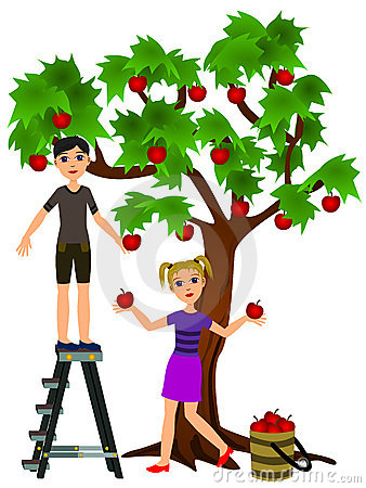 Clipart apple picker ladder png library Apple Picking Clipart | Free download best Apple Picking Clipart on ... png library