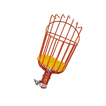 Clipart apple picker ladder transparent stock TTLike Fruit Picker Basket for Picking Apple Lemon Avocado and All Kinds of  Fruit transparent stock