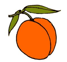 Clipart apricot png free stock Free Apricot Cliparts, Download Free Clip Art, Free Clip Art on ... png free stock