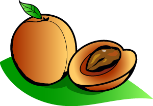 Clipart apricot graphic library download Apricot Clip Art | Clipart Panda - Free Clipart Images graphic library download