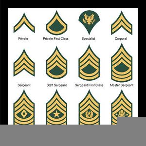 Clipart army rank image free stock Army Csm Rank Clipart   Free Images at Clker.com - vector clip art ... image free stock