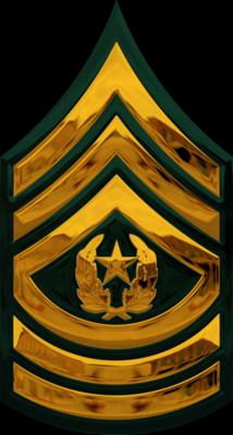 Clipart army rank clip art transparent Army Csm Rank PNG Transparent Army Csm Rank.PNG Images.   PlusPNG clip art transparent