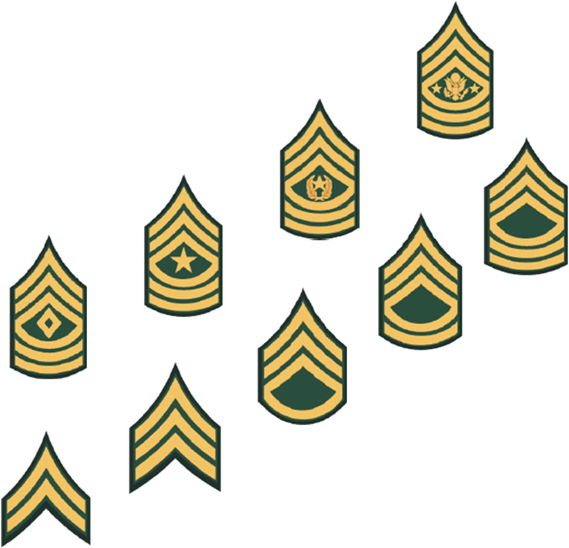 Clipart army rank clip royalty free download Download Free png army nco rank insignia clipar - DLPNG.com clip royalty free download