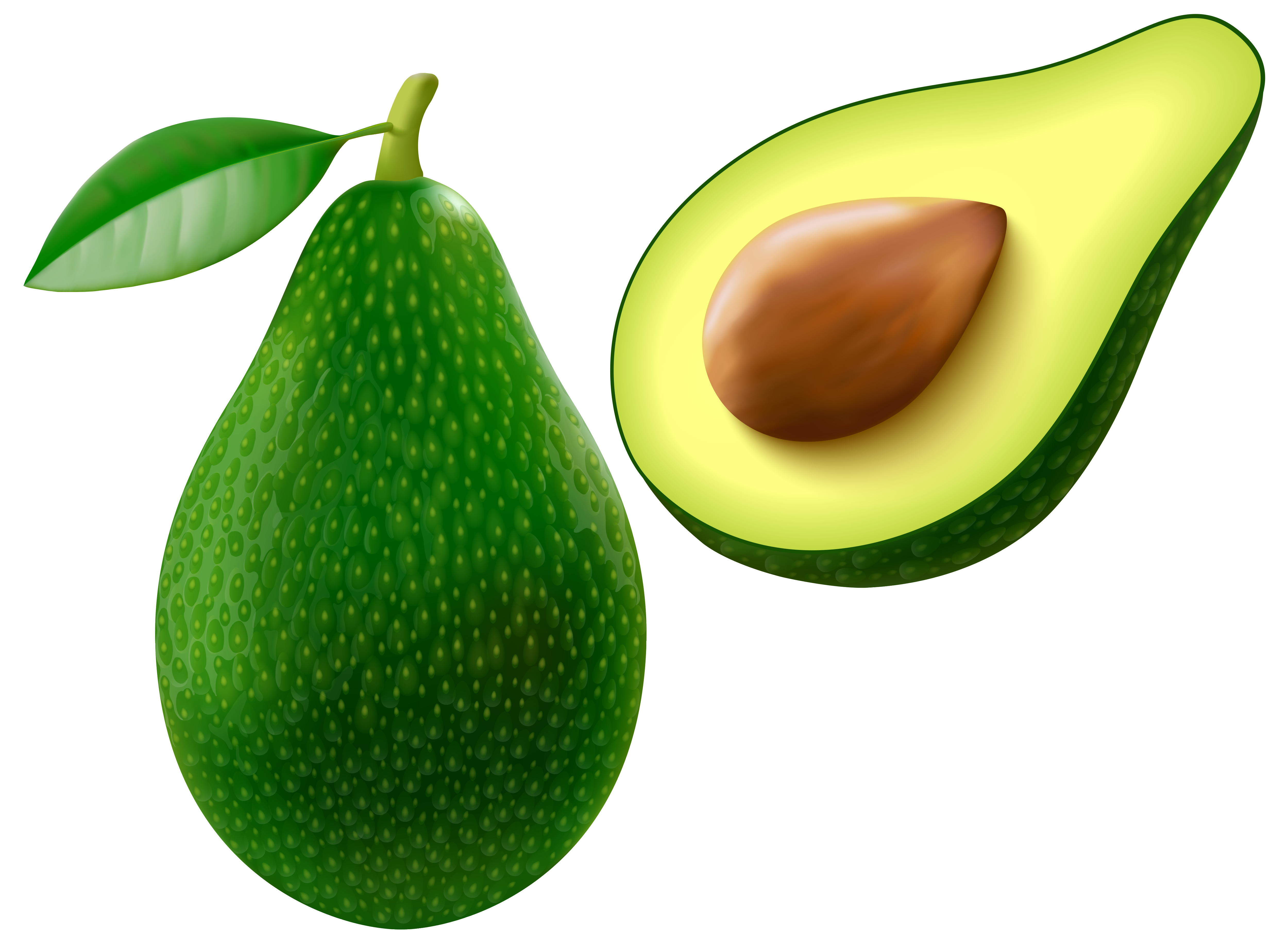 Free clipart images avacado image royalty free library Avocado PNG Vector Clipart Image | Gallery Yopriceville - High ... image royalty free library