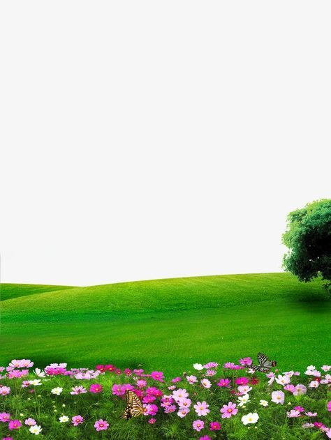 Nature clipart wallpaper free download Nature, Flowers, Lawn PNG Transparent Image and Clipart for Free ... free download