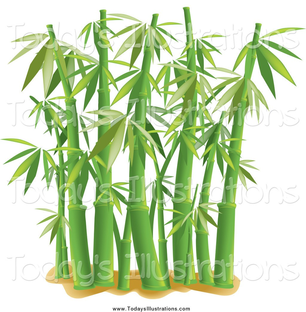 Clipart bamboo trees free download Bamboo plant clipart 5 » Clipart Portal free download