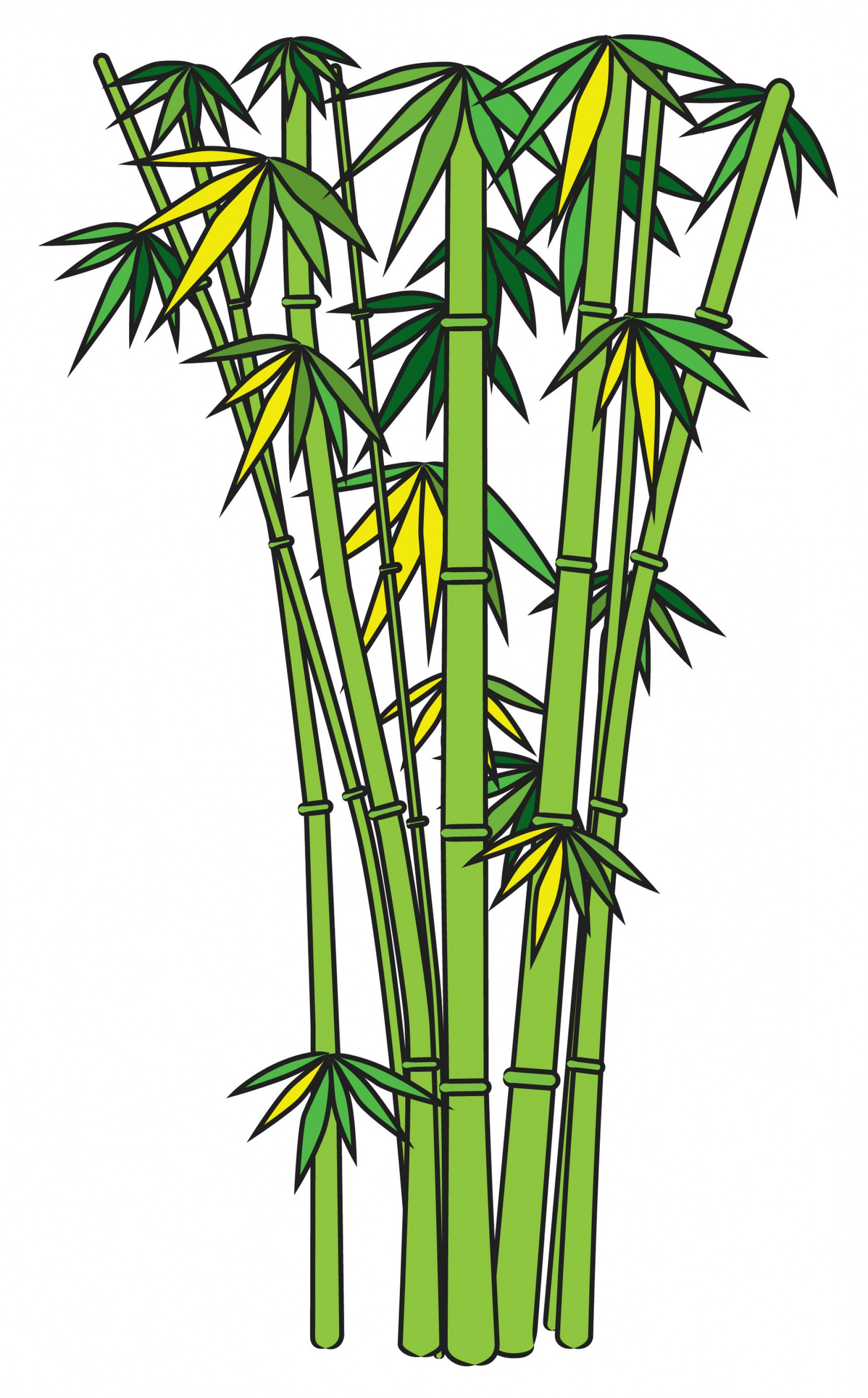 Clipart bamboo trees picture library download Bamboo Clipart | Free download best Bamboo Clipart on ClipArtMag.com picture library download
