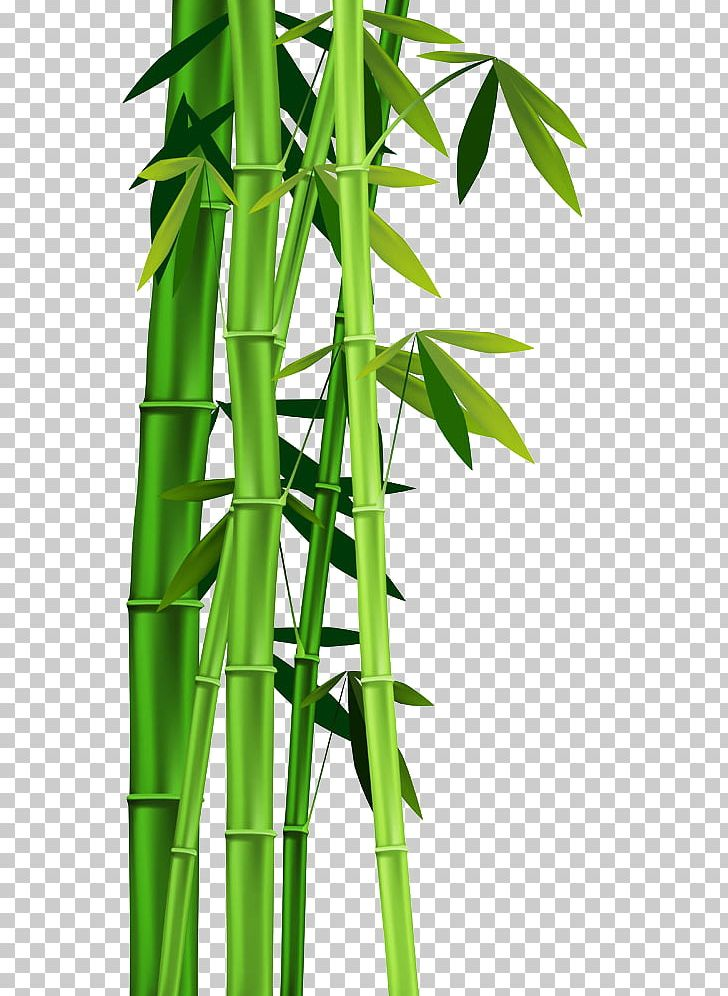 Clipart bamboo trees graphic royalty free Bamboo Plant Stem PNG, Clipart, Bamboo Bor, Bamboo Frame, Bamboo ... graphic royalty free
