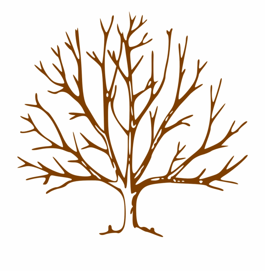 Clipart bare tree picture image library Bare Tree Clipart Free PNG Images & Clipart Download #1549491 ... image library