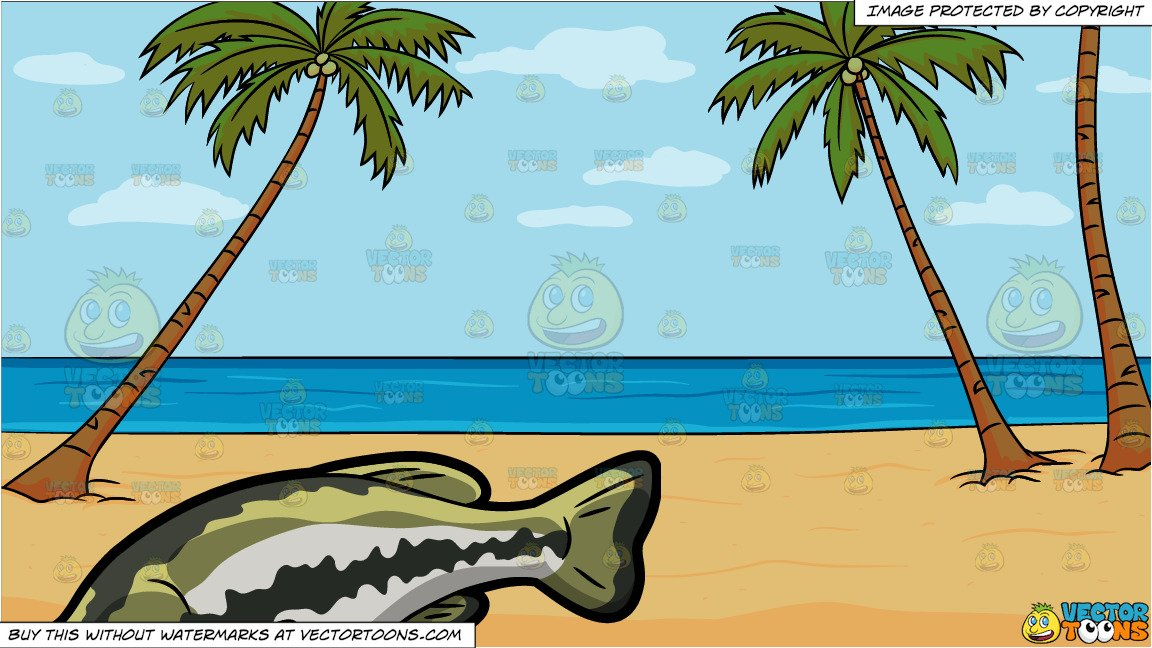 Clipart beach background clip transparent library A Large Mouth Bass and A Calm Beach Background clip transparent library