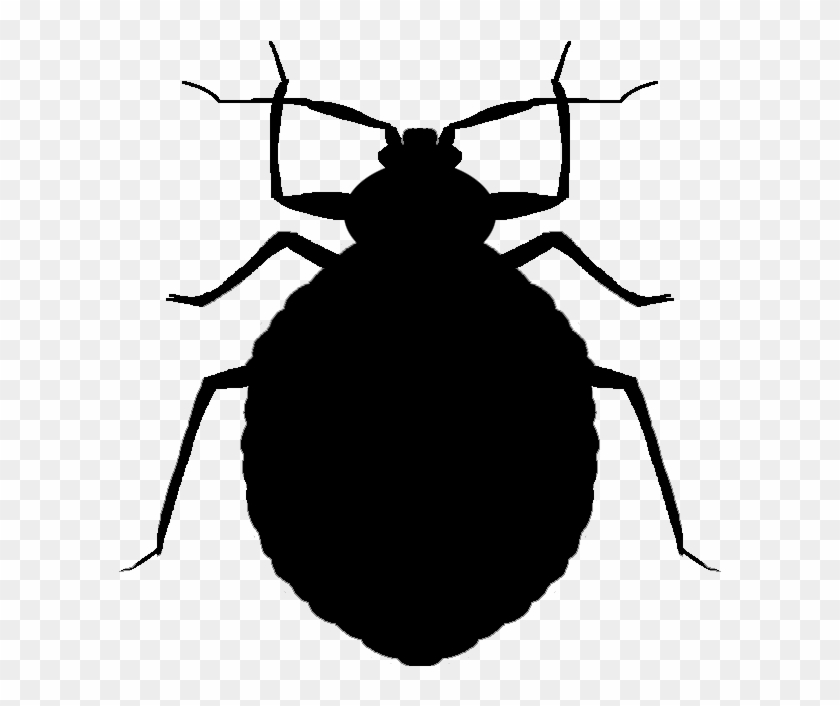 Clipart bed bugs clipart royalty free stock Vector Bug Cricket - Bed Bugs Black And White Clipart, HD Png ... clipart royalty free stock