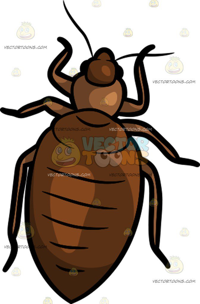 Clipart bed bugs vector transparent Bed bug clipart 5 » Clipart Portal vector transparent