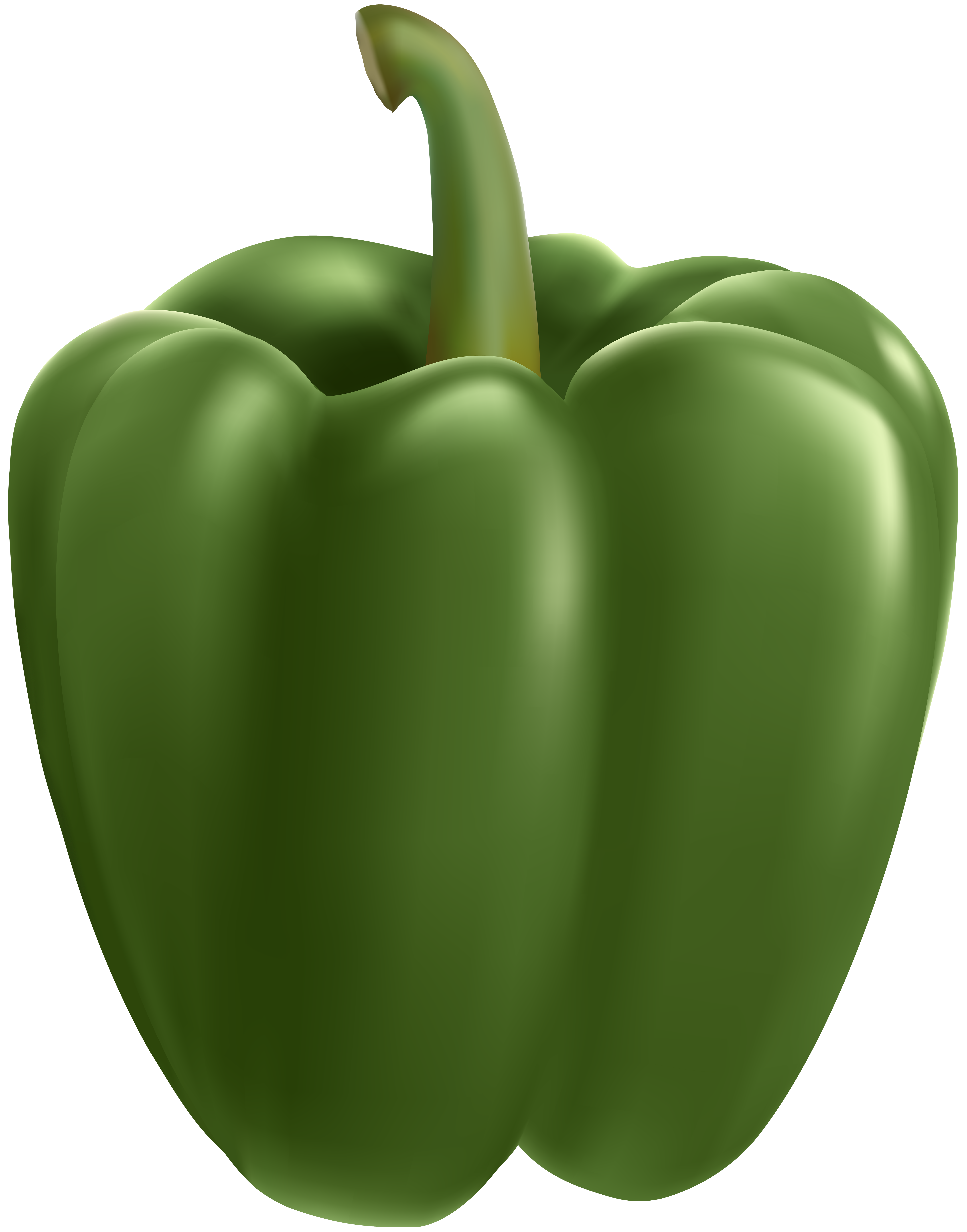 Clipart bell peppers svg freeuse download Green Bell Pepper Transparent Clip Art Image | Gallery Yopriceville ... svg freeuse download
