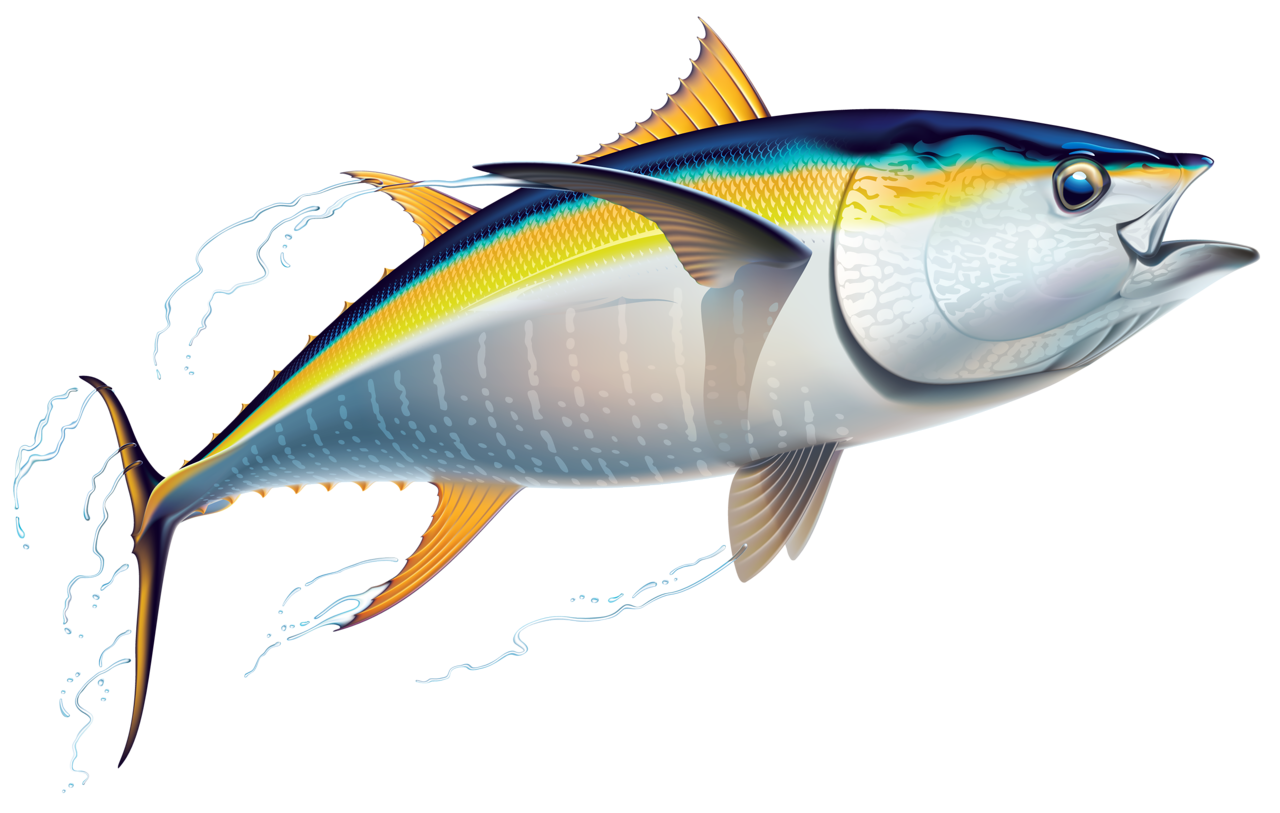 Tuna fish clipart picture royalty free 3.png | Pinterest | Fish, Album and Craft picture royalty free