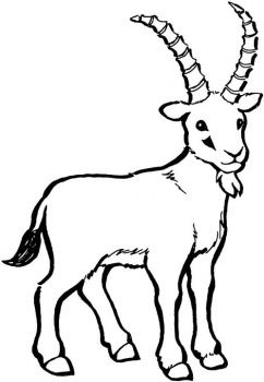 Clipart billy goat picture Billy Goat Gruff | Clipart Panda - Free Clipart Images | goat ... picture