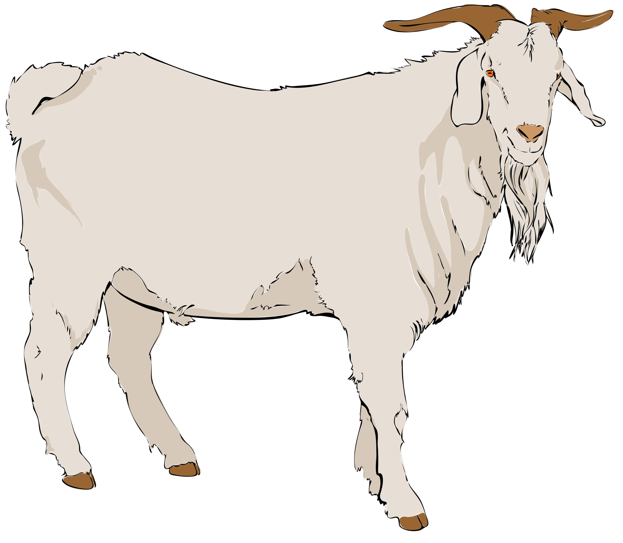 Clipart billy goat clip library stock Billy goat clip art clipart images gallery for free download ... clip library stock