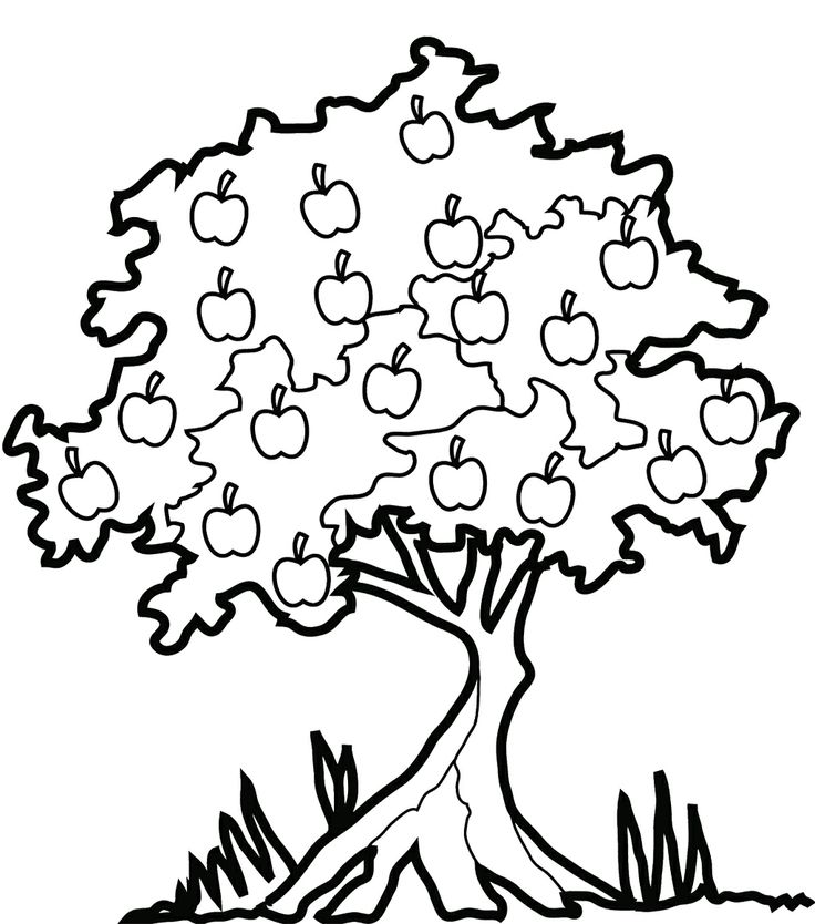 Clipart mangoes on tree black and white graphic freeuse Free Images Apple Trees, Download Free Clip Art, Free Clip Art on ... graphic freeuse