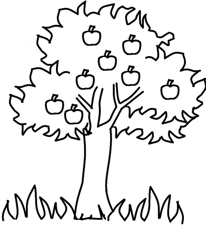 Clipart black and white apple tree in s png free library Free Apple Tree Images, Download Free Clip Art, Free Clip Art on ... png free library