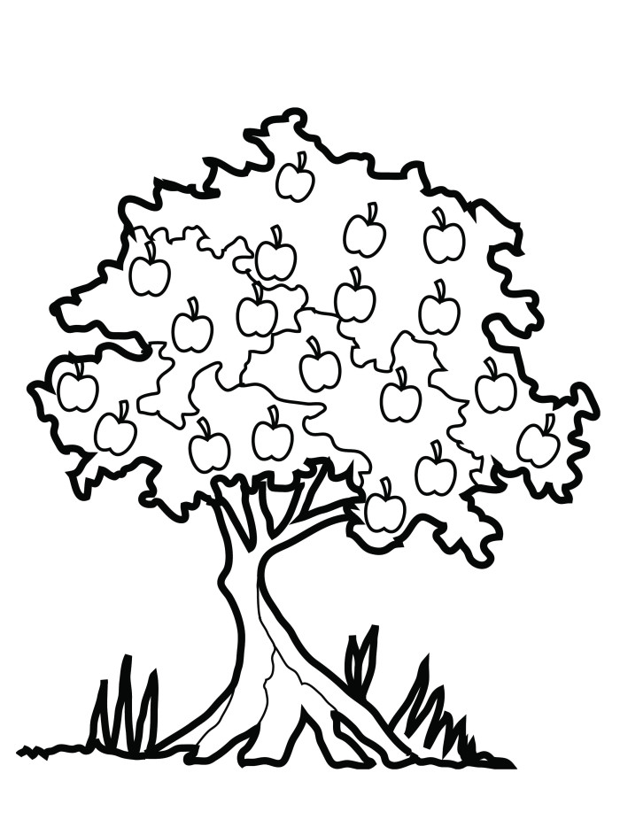 Clipart black and white apple tree in s banner free download Free Apple Tree Images, Download Free Clip Art, Free Clip Art on ... banner free download