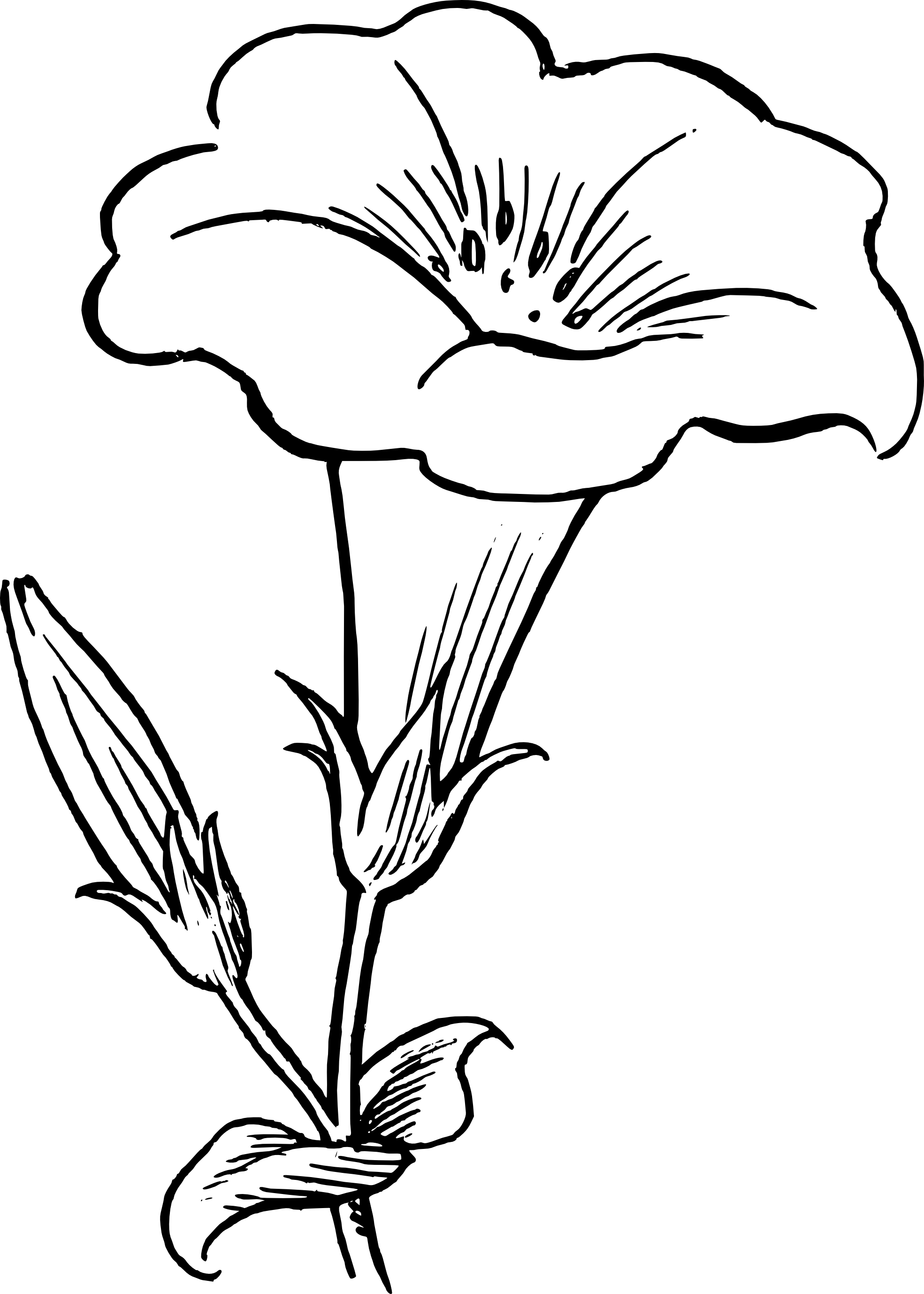 Line drawing of flowers clipart royalty free download Best Flower Clipart Black And White #13540 - Clipartion.com royalty free download