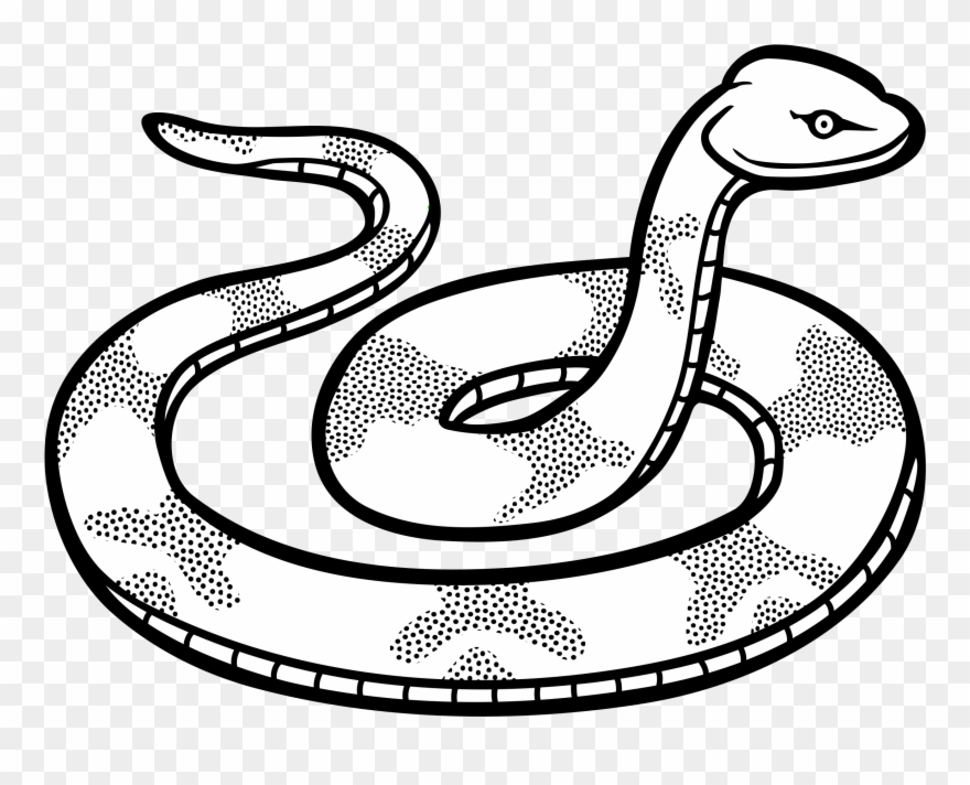 Snake black white clipart svg black and white Snake Line Clipart - Clip Art Black And White Snake - Png Download ... svg black and white