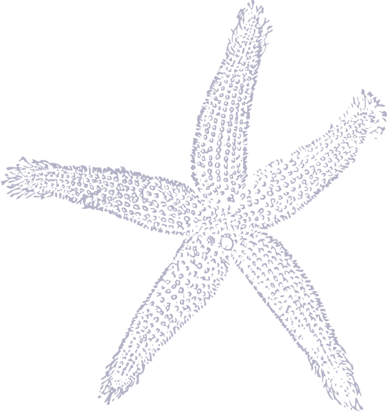 Star fish clipart black and white banner free 30 Great Starfish Clipart Black And White. Fabulous Starfish Clipart ... banner free