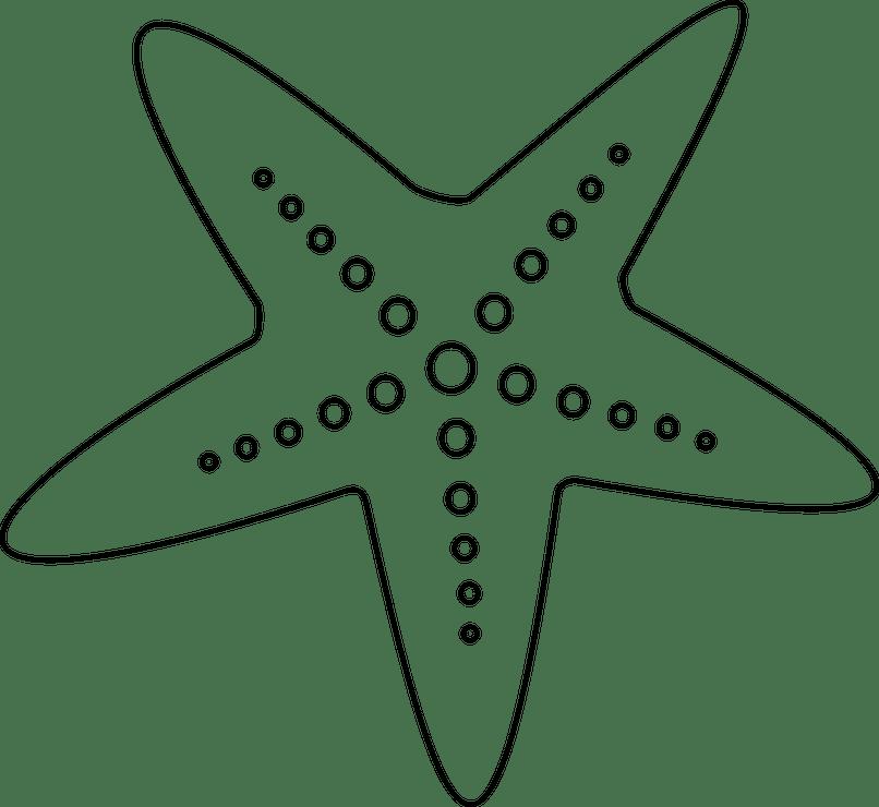 Clipart black and white star fish svg transparent Cartoon Black And White Starfish | Animaxwallpaper.com svg transparent