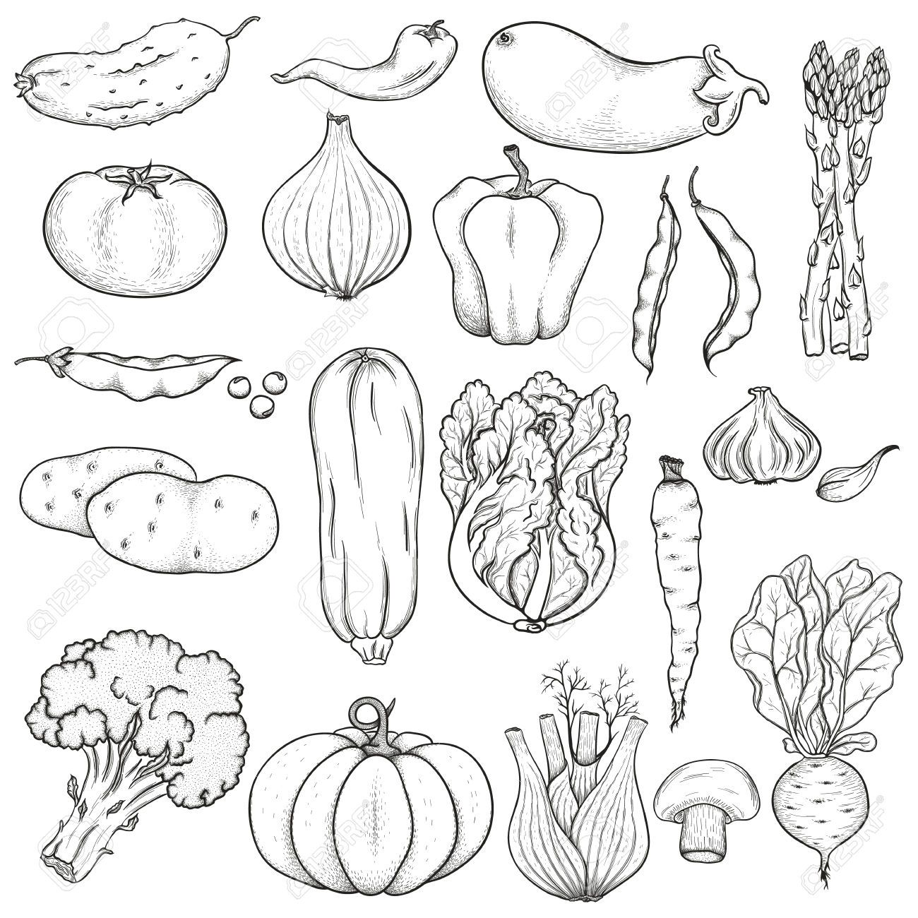 Eating fruits and vegetables clipart black and white clip clipart vegetables black and white - Google Search | MFM | Vegetable ... clip
