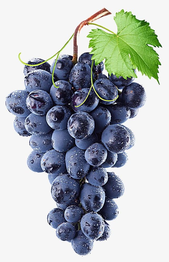Clipart bluebunch jpg free download Purple Grape PNG, Clipart, Agriculture, Berry Fruit, Blue, Bunch ... jpg free download