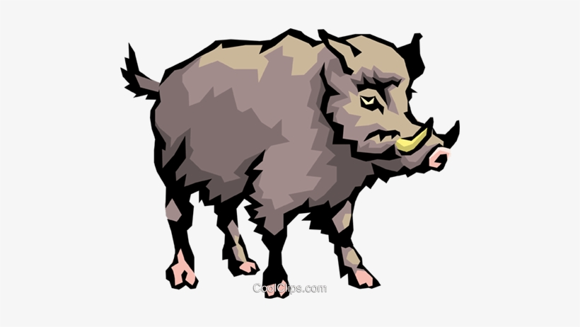 Clipart boar vector free stock Wild Boar Royalty Free Vector Clip Art Illustration - Transparent ... vector free stock
