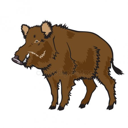 Clipart boar clip royalty free download Download wild pigs clipart Domestic pig Common warthog Clip art ... clip royalty free download